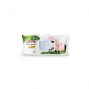 Nuby citroganix toallitas limpieza bebe (80 toallitas)
